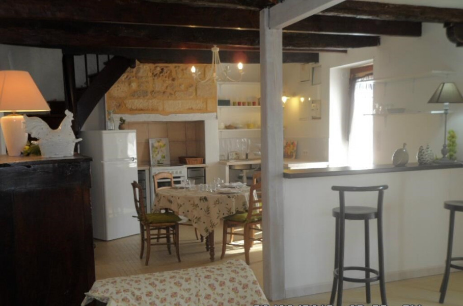 Holiday rentals Les Eyzies-de-Tayac-Sireuil - House - 3 persons - Garden furniture - Photo N° 1