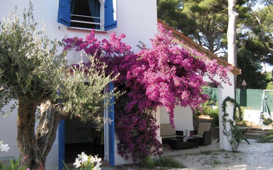 Location vacances La Croix-Valmer -  Gite - 4 personnes - Jardin - Photo N° 1